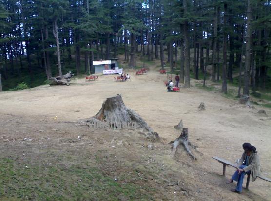 Naldhera, near Shimla
